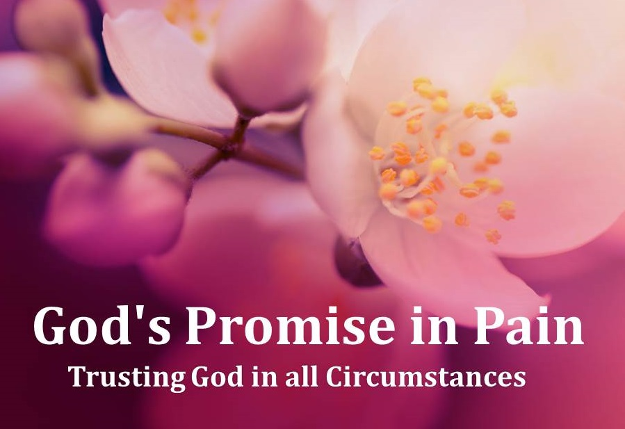 God's Promise in Pain